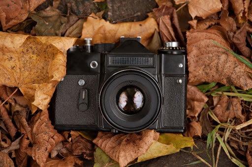 Posadas habilita también las actividades fotográficas y audiovisuales